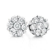 Cluster Stud Earrings with 0.25 Carat TW of Diamonds in 10ct White Gold