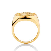 Large Coin Ring in 10ct Yellow Gold