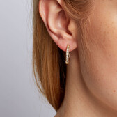 Hoop Earrings with 0.33 Carat TW of Diamonds in 10ct Yellow Gold