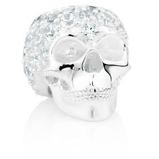 Cubic Zirconia & Sterling Silver Wild Hearts Skull Charm