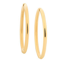 14mm Sleeper Earrings in 10ct Yellow Gold