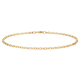 "27cm (11"") Belcher Anklet in 10ct Yellow Gold"